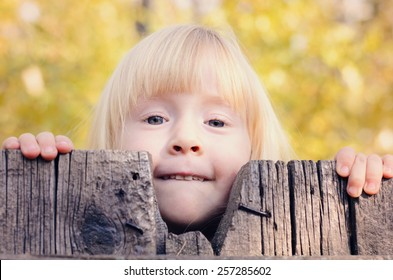 Close up Little Blond Girl Peeking Over an Old Wooden Fence with a Smile While Looking at the Camera.
