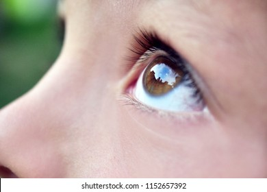 Close up of a little girl (kid) eyes looking up at the sky with a garden in the background. Concept: Nature, famity, freedom
