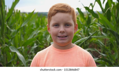 Close up of little smiling red-haired boy with freckles looking into camera against the background of corn field at organic farm. Portrait of happy ginger child standing in the meadow
