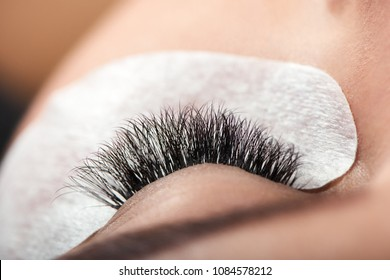 Close up of long enlarged woman's lashes. beatifully and accurately made by professional in modern beaty salon. Healthy, young skin with cosmetic stickers for lashes enlarging.