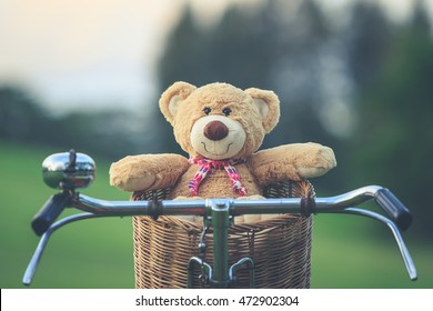 Close up lovely brown teddy bear in rattan basket on vintage bike in green field. Retro and vintage style