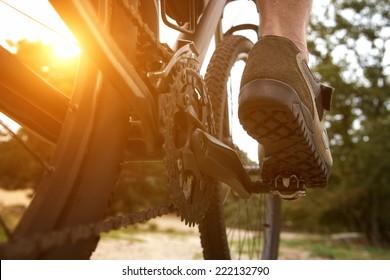 Close up low angle rear view man peddling bike