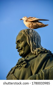 Close up low angle view of the head on the statue of Michiel de Ruyter in Vlissingen, the Netherlands, a Dutch admiral of 17th century; seagull on top of his head and hair full of white bird droppings