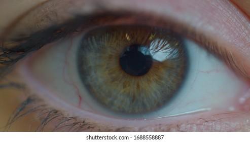 Close up macro eye opening human iris natural beauty.