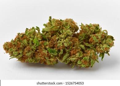 Close up macro of medical and recreational Strawnana strain marijuana bud natural light grown on white background