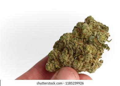 Close Blueberry Cheese Strain Medical Marijuana Stock Photo Edit