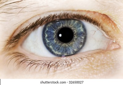 Close up macro shot of a blue eye filling the entire frame