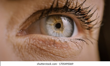 Close Up Macro Shot of an Eye. Young Beatiful Female With Light Blue, Yellow and Brown Color Pigmentation on the Iris. Mascara is Applied to Eyelashes. Blinking Eye.