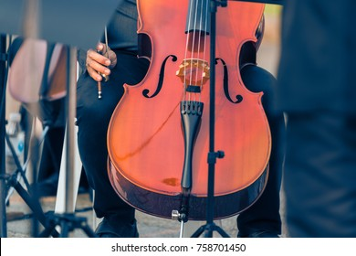 close up of male cellist holding cello at an outdoor concert, during warm golden hour evening light, good for music or self interest theme concept