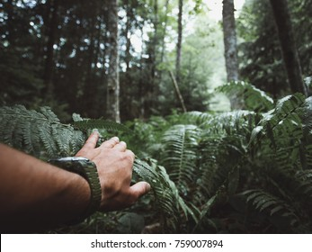 Close up of male hand in jungle.Survival travel concept
