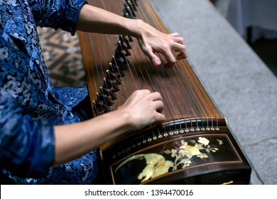 Close up of a male performer playing a guzheng or Chinese zither. It is a plucked string instrument with a more than 2,500-year history.