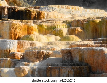 Close up of Mammoth Hot Springs Terrace in morning sunshine / Mammoth Hot Springs Morning close up / Mammoth Hot Springs in Yellowstone