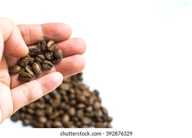 close up man hand holding multiple roasted coffee beans on white background