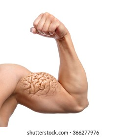 Close up of man's arm showing biceps shaped brain. Intellect power concept.