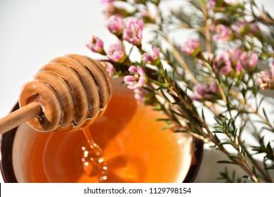 close up of manuka tree flower honey and dipper in a brown bowl on a white surface table. No people. Healthy beverage and ingredient for spa treatments.