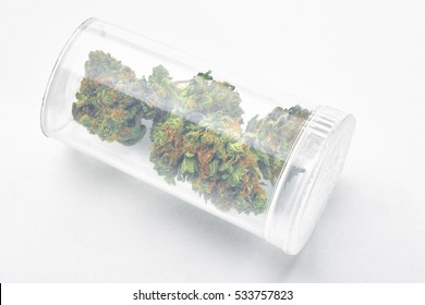 Close up of marijuana nuggets in clear prescription bottle
