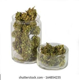 close up of medical marijuana
