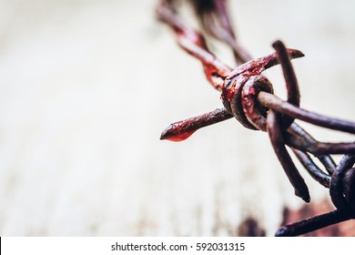close up of metal Barbed Wire made like the crown of thorns of Jesus with red blood over wooden background with copy space, can be used for Christian concept , easter concept