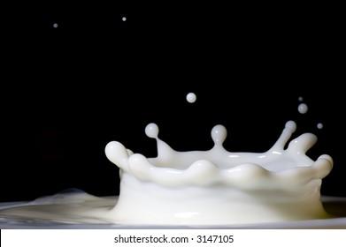 Close up of milk splash with black background