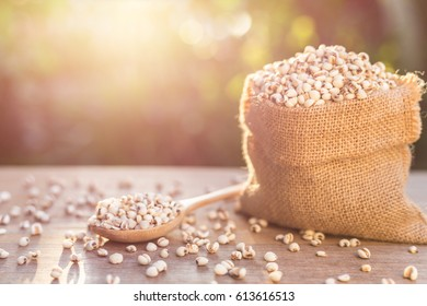 Close up millet rice or millet grains in small sack on wooden table. Outdoor shooting with sunlight and blur background.