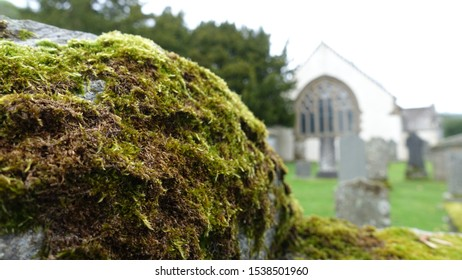Close up of moss on a rock with historic church building and graveyard in background