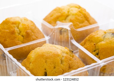 Close up of a muffin cookies with chocolate chips in a plastic container,