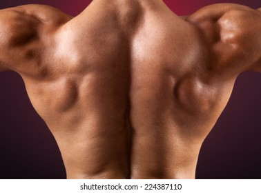 Close up of muscular back on dark background