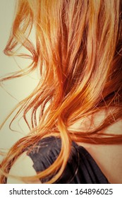 Close up natural carrot color curly hair from back