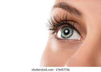 Close up of natural female eye isolated on white background