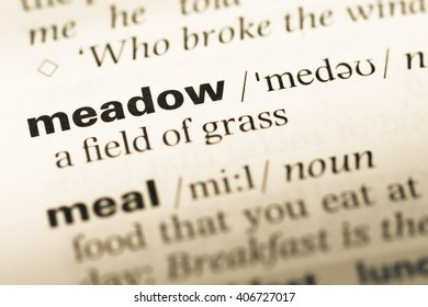 Close up of old English dictionary page with word meadow