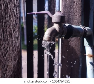 close up old faucet hose pipe dripping water green concept.