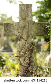 Close up of the old stone cross in sunlight covered with climbing fresh and dry ivy in a cemetery