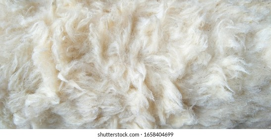 Close up old white color synthetic fur, white wool texture background, cotton wool, white fleece, light natural sheep wool, fur of  paint roller brush, top view skin and soft wool texture background.