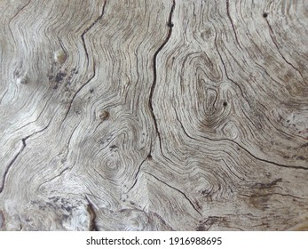 Close up old wood gain or wood pattern use for web design and abstract texture background
