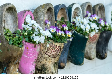 Close up of old wooden clogs with blooming flowers in Netherlands