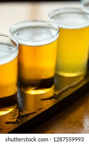 Close up on a flight of craft beer, with a row of golden ales in small taster glasses, with space for text on the bottom