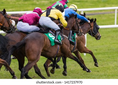 Close up on group of jockeys and race horses sprinting towards the finish line