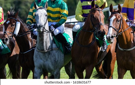 Close up on group of racehorses and jockeys on the race track