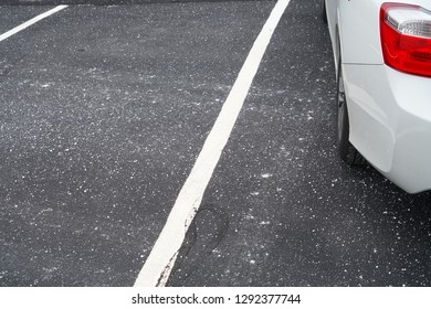 close up on parking lots with salt before snow in winter