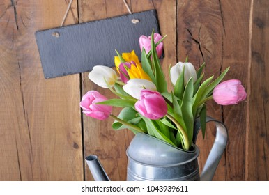 close on tulips in a metal watering can in front of a slate on wooden background