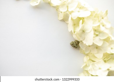 Close Up on White Hydrangea Floral Bouquet with Marijuana Nug - Cannabis Wedding