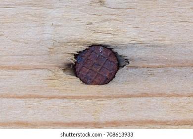 Close up on wood and nail, rusty nail on wood, wood texture