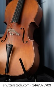 Close up one standing brown cello close to the wall. Shadow on white wall