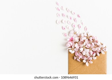 close up of opened craft paper envelope full of spring blossom sacura flowers on white background. top view. concept of love. Flat lay.