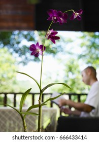 close up of orchid flower and background is man reading