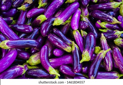 Close up Organic Long Purple Aubergine or Eggplant (Solanum melongena) in the market.