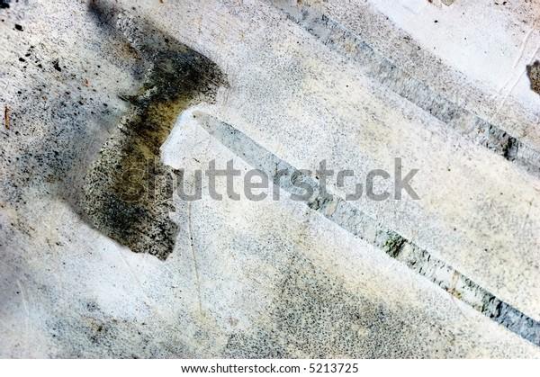 A close up of paper birch bark