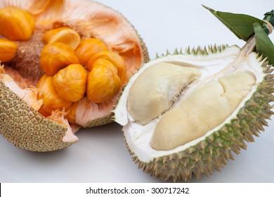 Close up of peeled durian & artocarpus integer over white background.