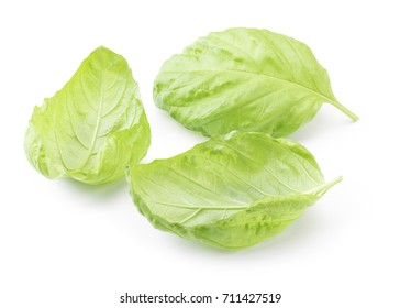 Close up of a perfect sweet basil isolated on white background in full depth of field with clipping path.