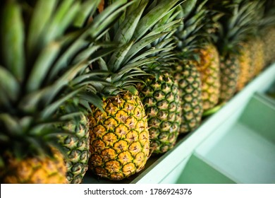 Close up of perspective view juicy ripe pineapples in a row on the wooden counter of a fruit shop on island. Colorful tropical background.